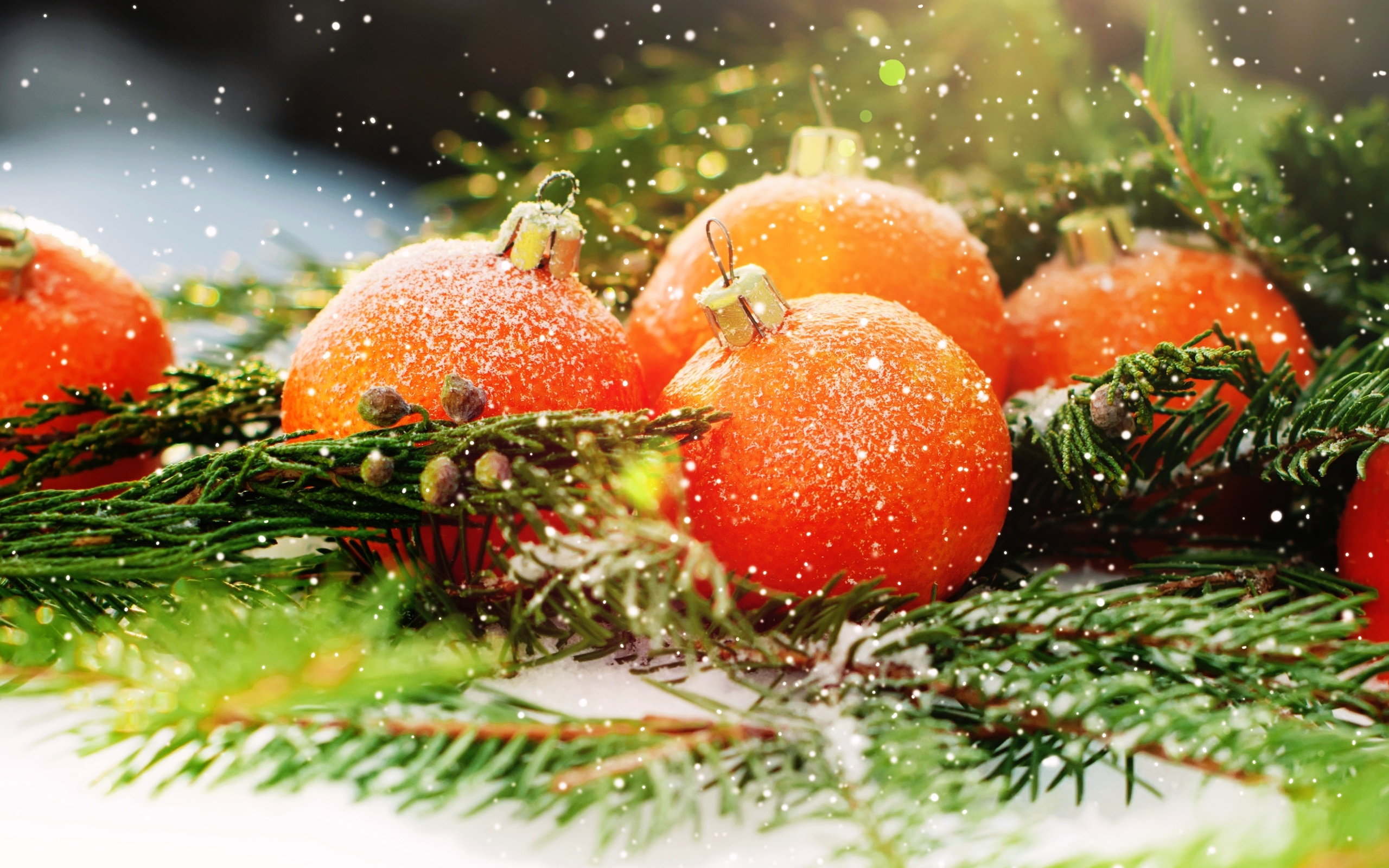 Днем защитника, открытка с мандаринами новогодняя